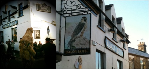 Falcon, Whittlesey